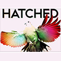 Pace University presents Hatched 2014. Fresh works. Freshmen.